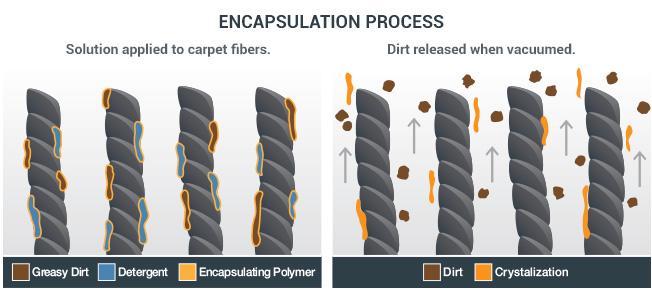 Crystallisation Carpet Cleaning